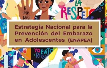 Micrositio Estrategia Nacional para la Prevención del Embarazo en Adolescentes (ENAPEA).