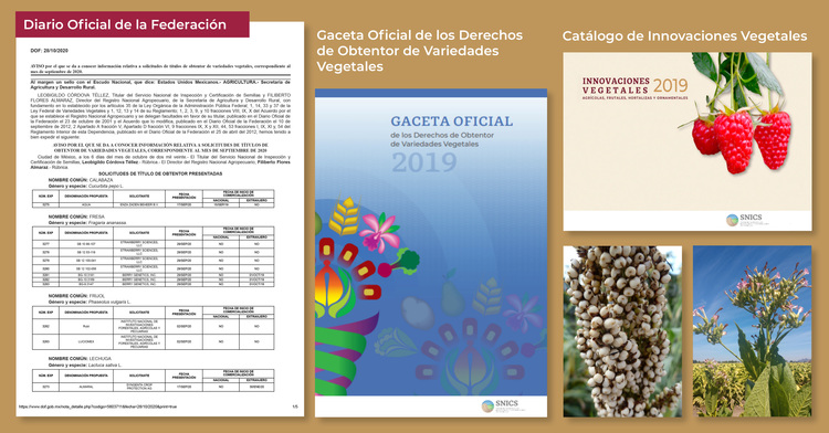 Documentos Variedades Vegetales