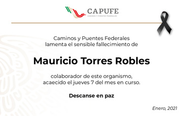 Mauricio Torres Robles