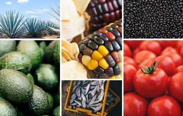 Mosaico de fotografías de productos agrícolas y pesqueros