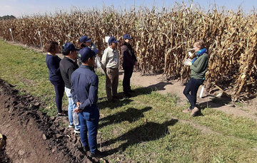 Se desarrollaron y evaluaron prácticas agronómicas sustentables.