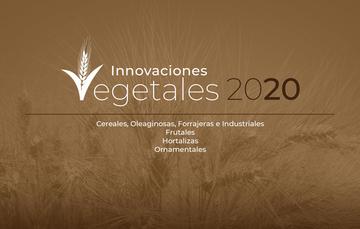 Portada Catálogo de Innovaciones 2020