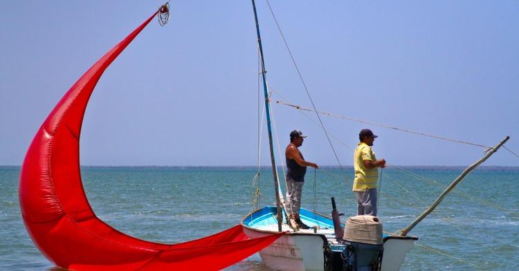 Se establece calendario de veda de temporada de pesca de camarón en el Pacífico
