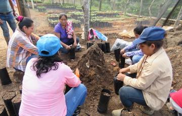 Mujeres preparando la tierra para plantar en Viveros