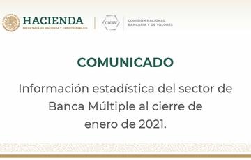 CNBV publica información estadística del sector de Banca Múltiple, al cierre de enero de 2021.