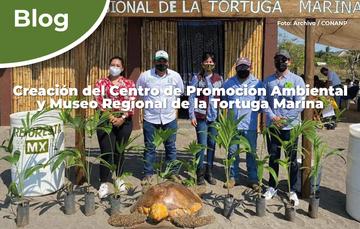 Creación del Centro de Promoción Ambiental y Museo Regional de la Tortuga Marina.