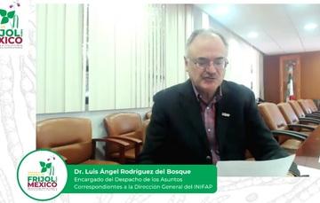 Dr. Luis Ángel Rodríguez del Bosque