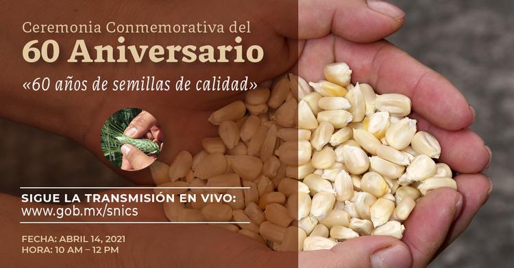 60 años de semillas de calidad