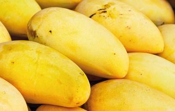 Mango, qué rico mango, mango qué bueno es