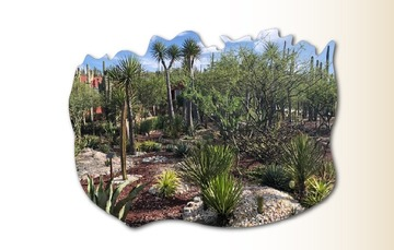 Jardín Botánico  Helia Bravo, ubicado en la Reserva de la Biósfera Tehuacán Cuicatlán