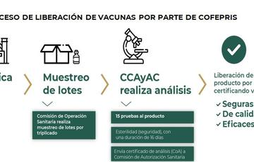 Proceso de liberación de vacunas