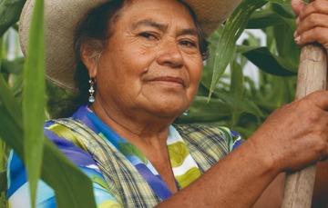 Reconociendo la importancia de la agricultura nacional