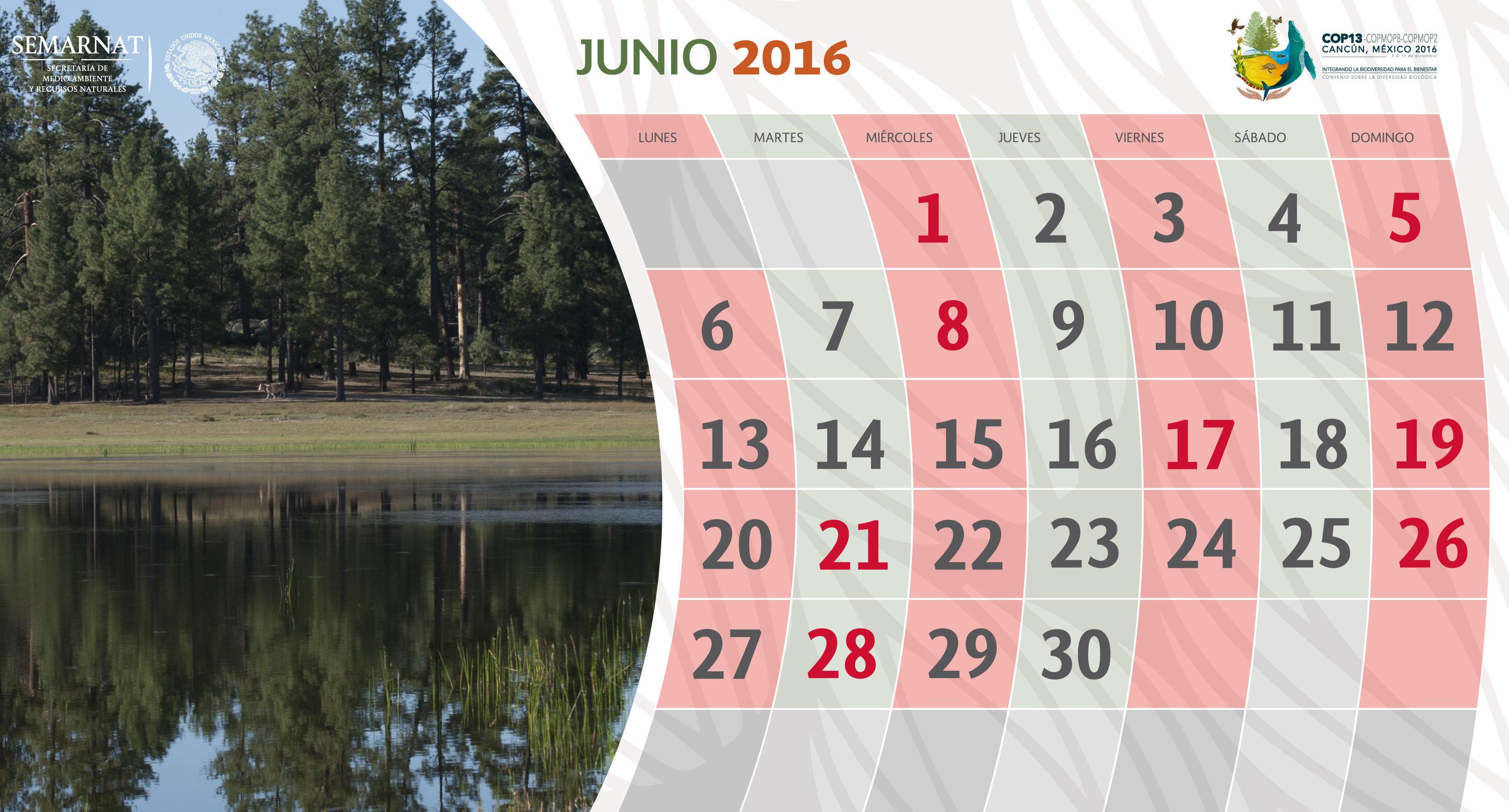 En junio consulta los decretos y efemérides del medio ambiente