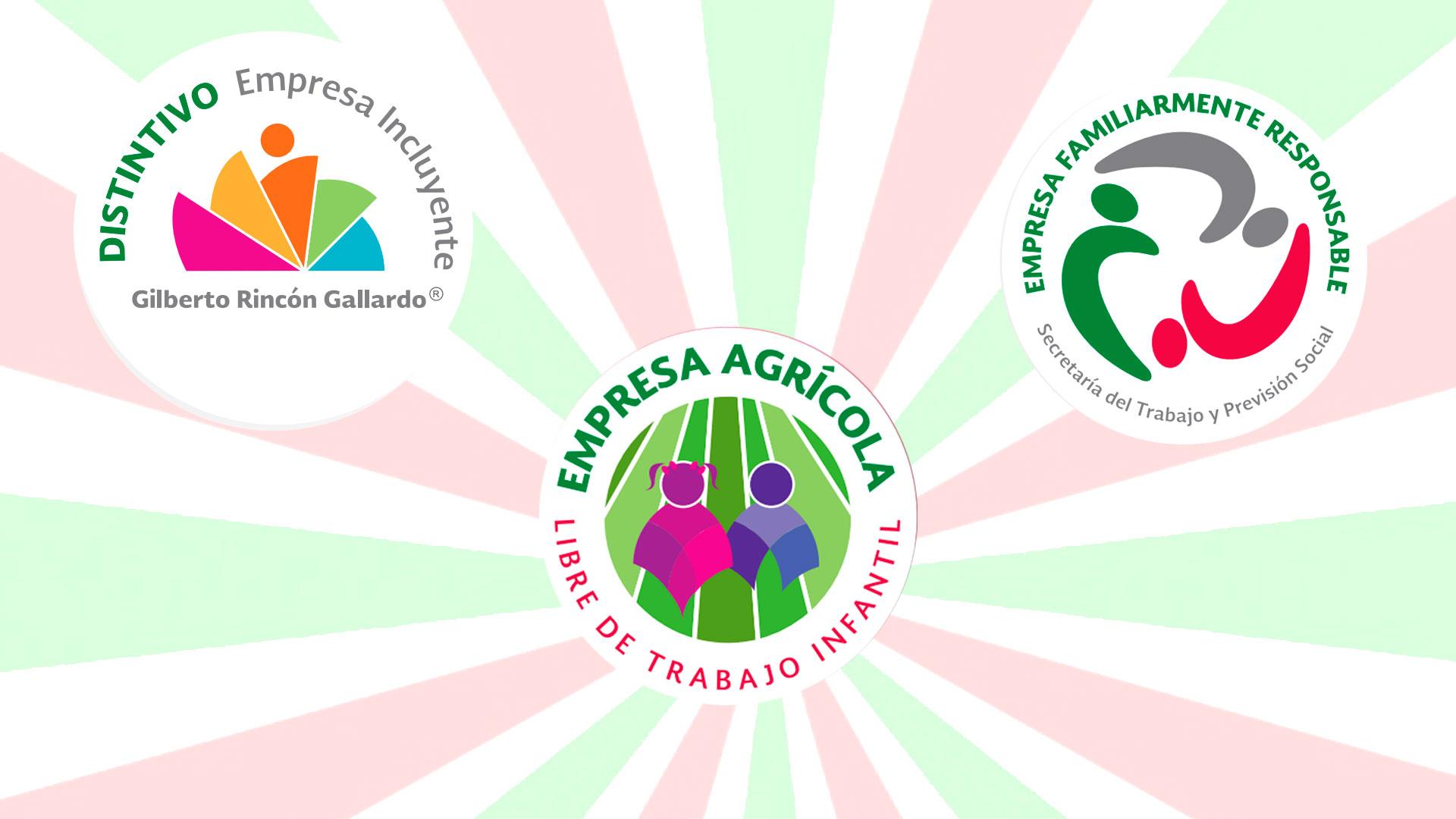 Logos de las convocatorias de la STPS
