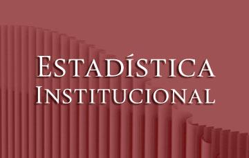 Imagen de la Estadística Institucional