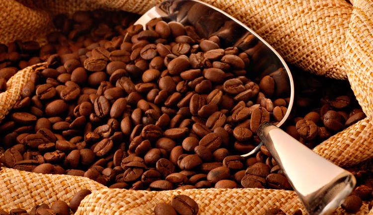 ¿Sabías que el Café Veracruz tiene Denominación de Origen?