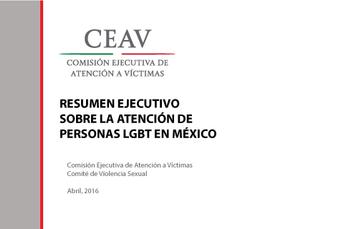 RESUMEN EJECUTIVO SOBRE LA ATENCIÓN DE PERSONAS LGBT EN MÉXICO