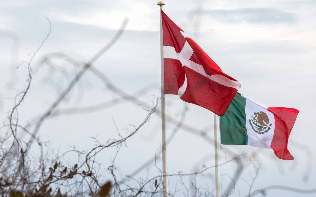 Banderas de Dinamarca y México ondeando