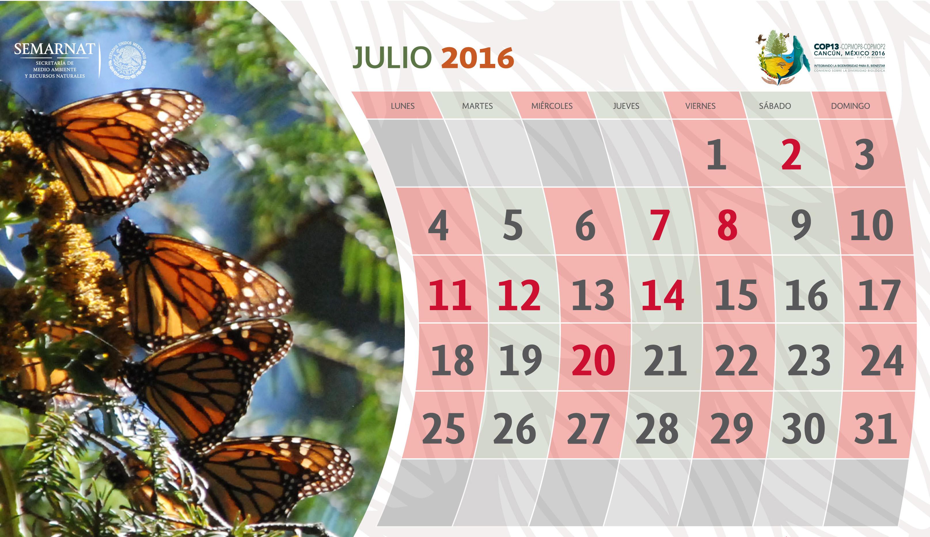 Consulta nuestro calendario de efemérides y decretos de julio.