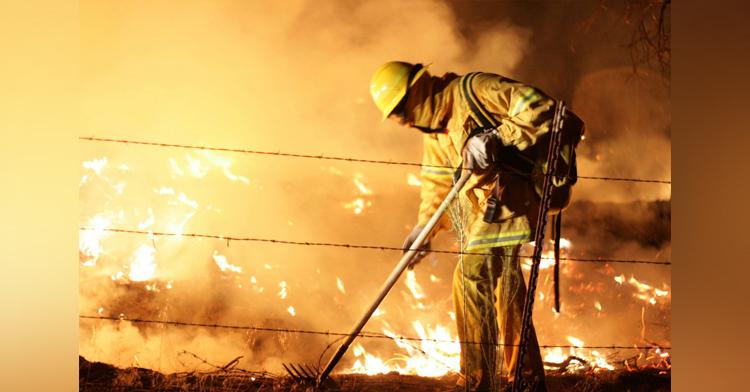 Denuncia los incendios forestales