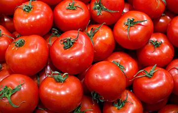 Jitomate (tomate rojo), es una hortaliza y sus propiedades son un medicamento natural
