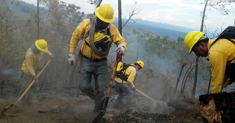 Reconocemos la labor que realizan los combatientes forestales de México.