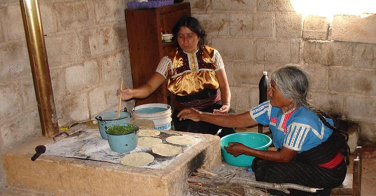 Estufas ecol gicas ahorradoras con chimenea beneficio for Construccion de chimeneas de lena