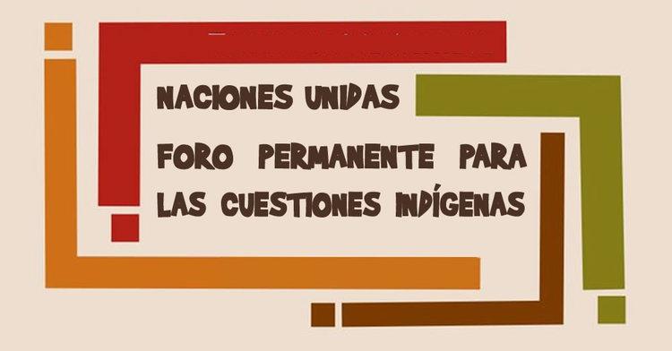 Foro Permanente para las Cuestiones Indígenas de la Organización de las Naciones Unidas.