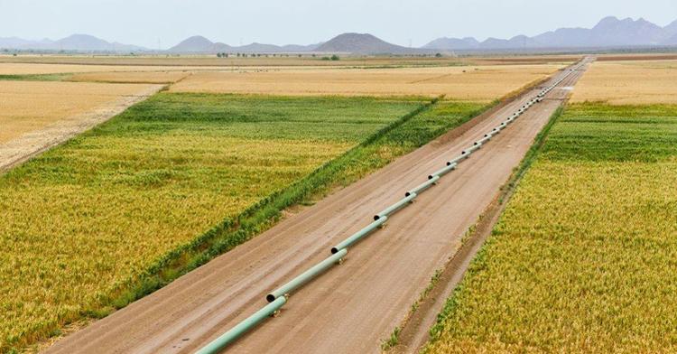 Preparación del terreno para la instalación del gasoducto.