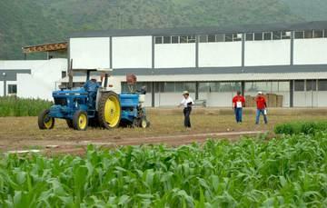 Gente trabajando en campo