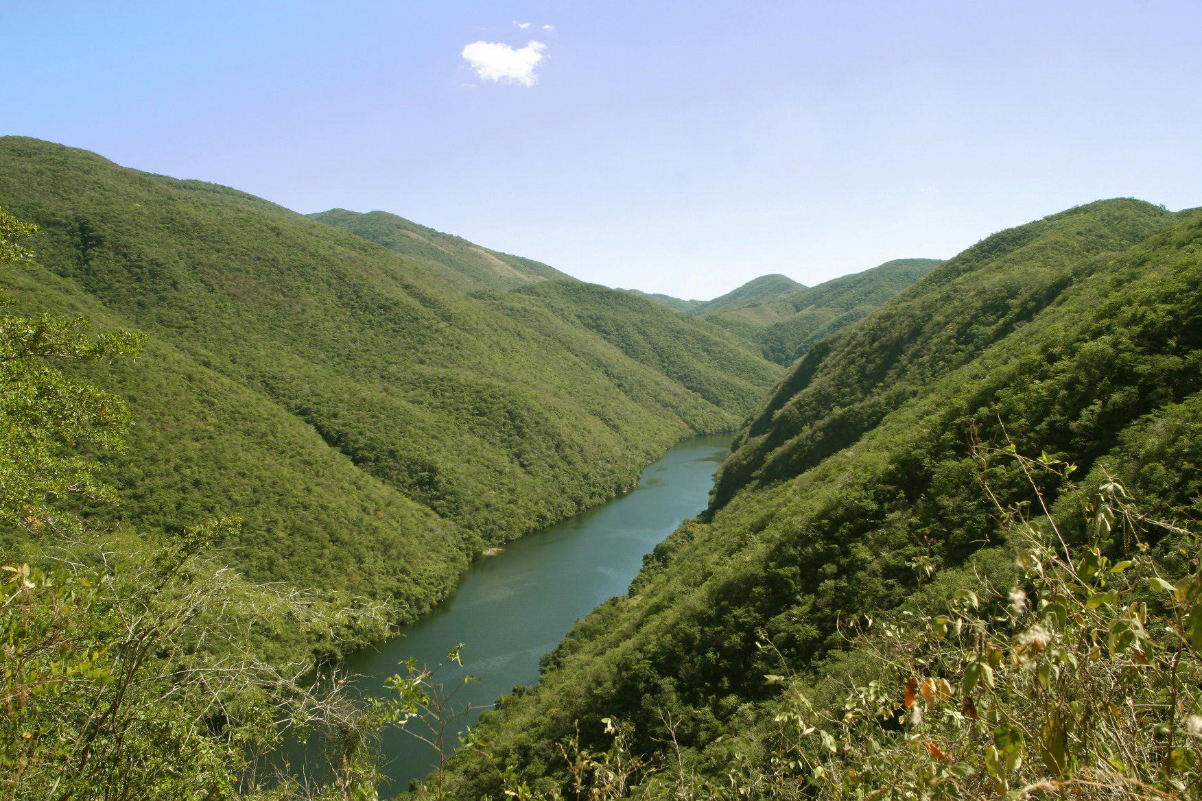 Imagen de la Reserva de la Biosfera Zicuirán-Infiernillo