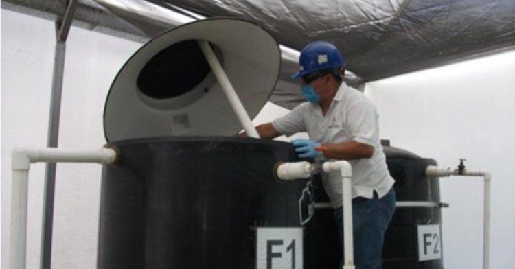 Operación y mantenimiento del sistema acuícola con reúso de agua residual tratada y descarga cero