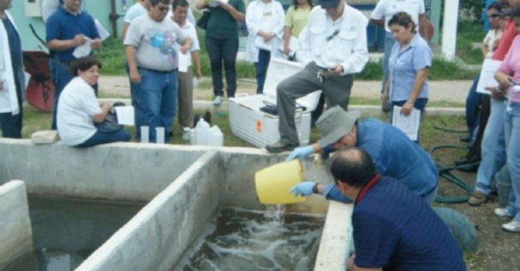 Incrementar la capacitación y formación de recursos humanos de la Conagua