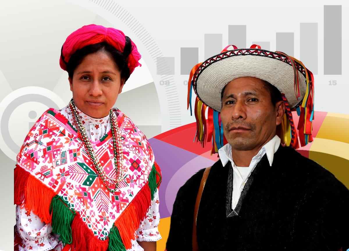 Fichas de Información Básica de la Población Indígena, 2015.