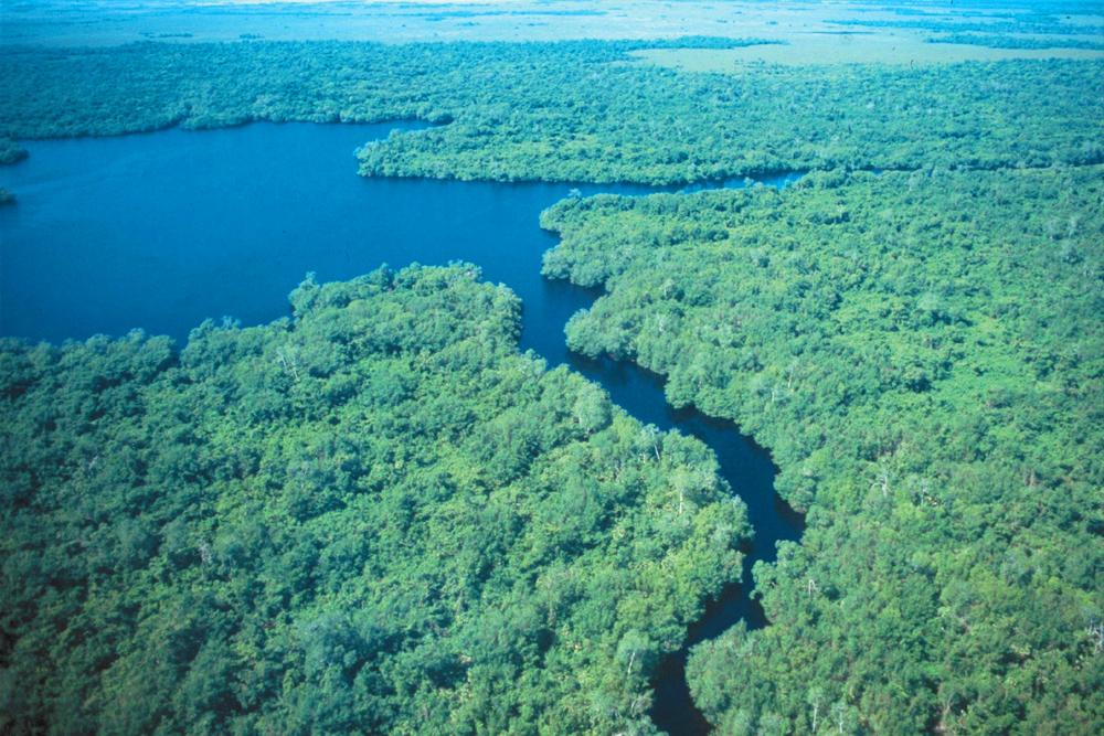 24 aniversario del decreto como Reserva de la Biosfera de Pantanos de Centla.
