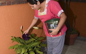 Las trabajadoras del hogar en México