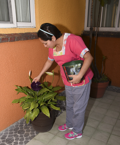 Imagen que muestra a una mujer regando las plantas de una casa.