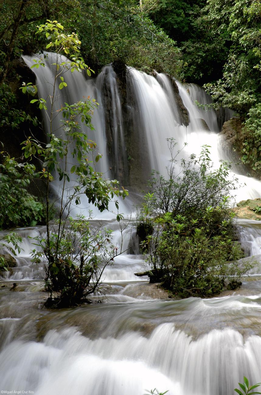 Área Natural Protegida de Ocosingo, Chiapas