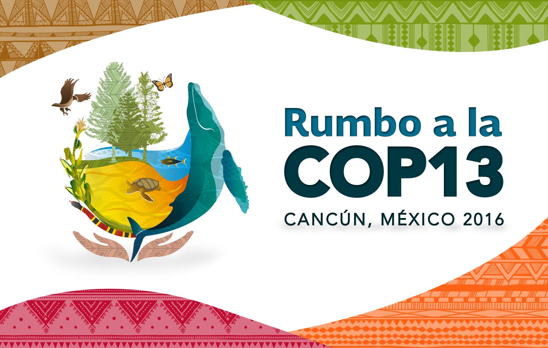 México rumbo a la COP13
