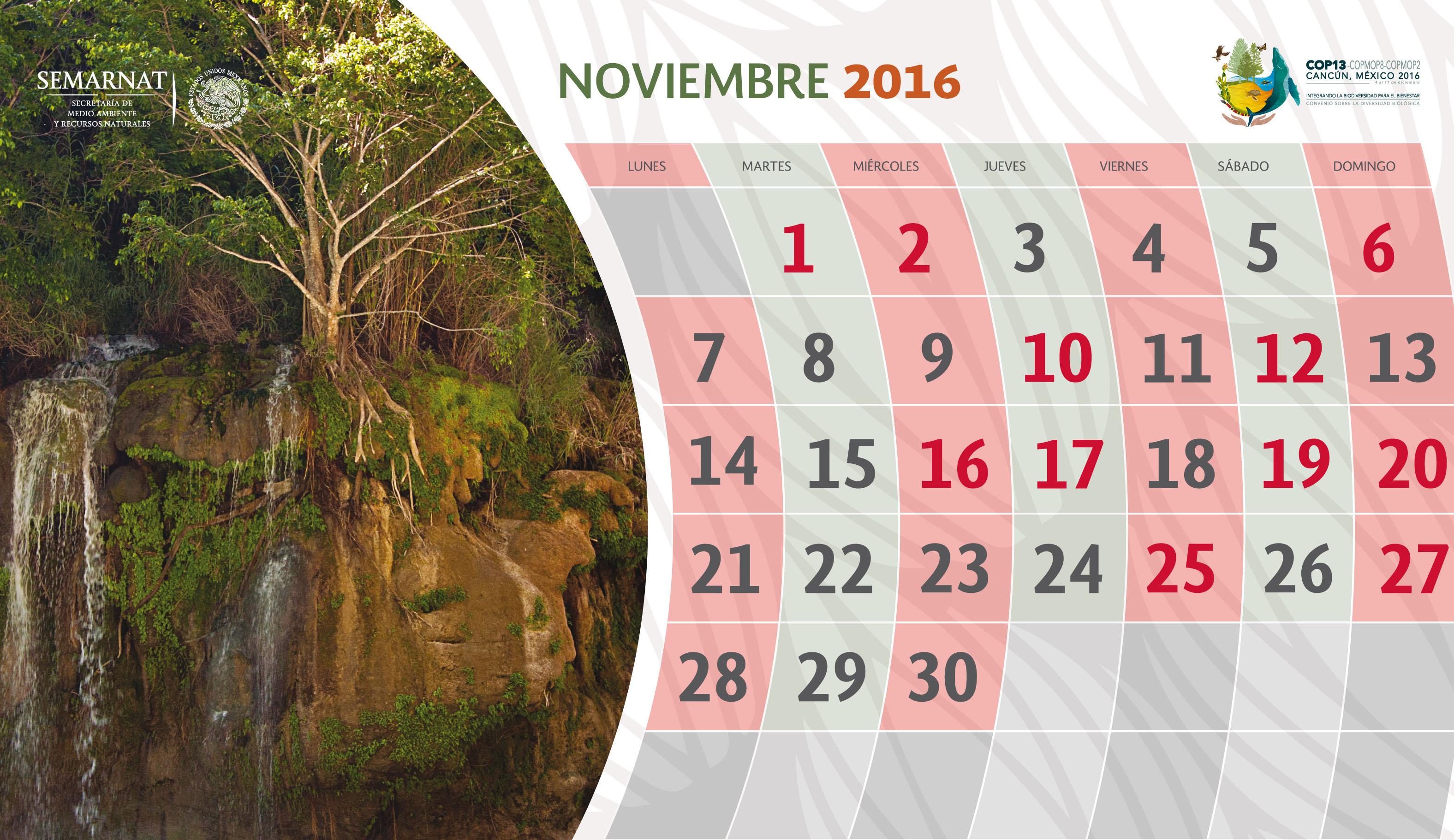 Efemérides y decretos de ANP, noviembre
