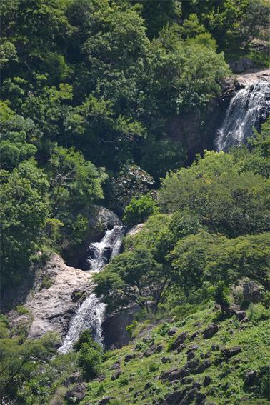 17 aniversario de la Reserva de la Biosfera Sierra de Huautla, Morelos.