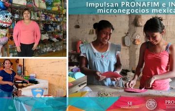 Impulsan PRONAFIM e INAES micronegocios mexicanos