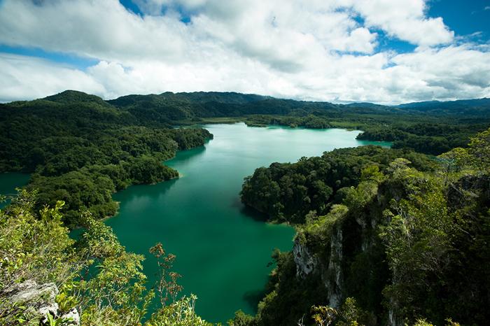 Área de Protección de Flora y Fauna Metzabok, Chiapas.