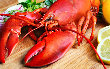 Langostas, camarones y cangrejos
