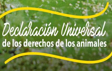 15 de octubre celebramos la Declaración Universal de los derechos de los animales.