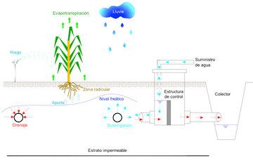 Componentes del proceso de regulación del régimen de humedad del suelo.