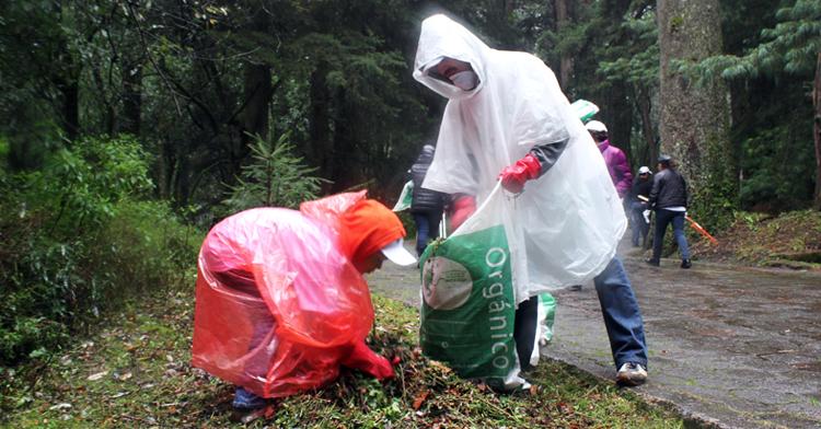 Participación del sector medio ambiente en Limpiemos Nuestro México.