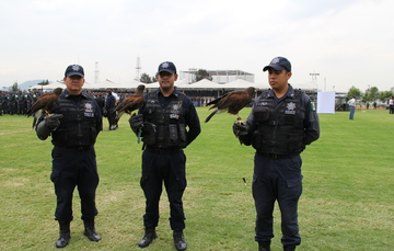 Cetreros de la Policía Federal.