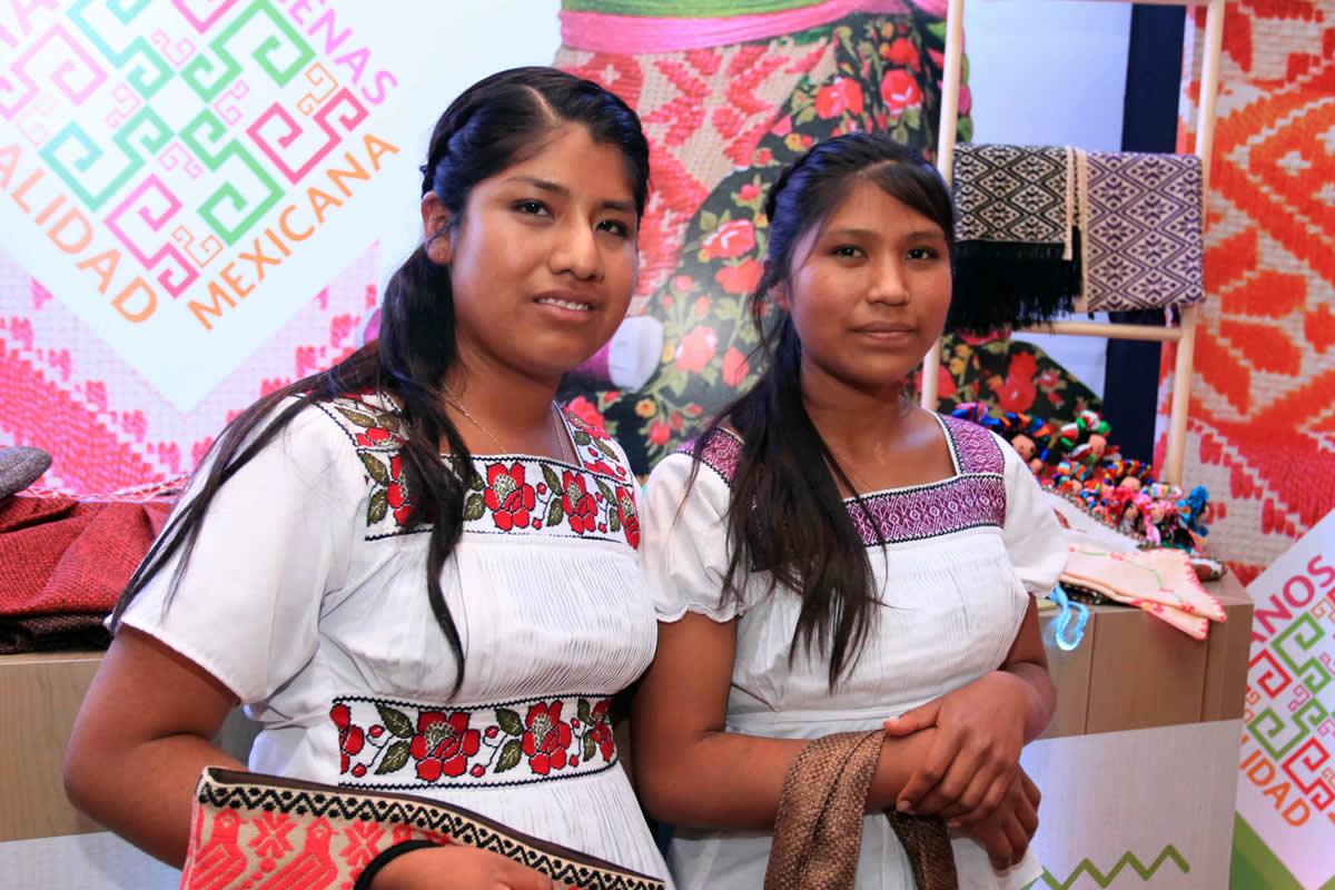 Indicadores Sobre La Mujer Rural Indígena En México