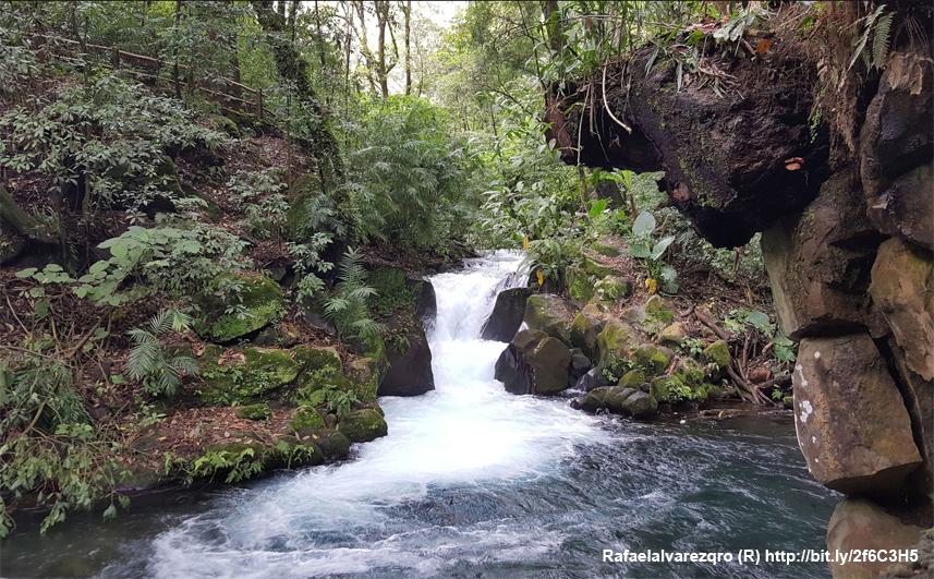 78 Aniversario del Parque Nacional Barranca del Cupatitzio.